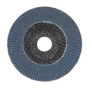 GARRYSON Zirconium Flap Disc